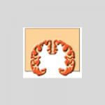 Sociedad Española de Neurologia