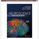 neurociencia - libro